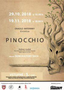 Rodinný muzikál Pinocchio @ Kultúrny dom Šaľa